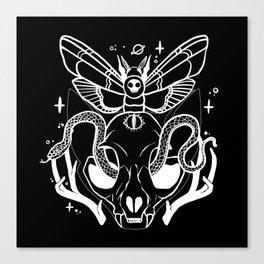 Cat Skull Death Head Moth Snake Illustration Canvas Print