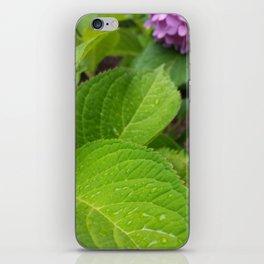 Hydrangea Leaf iPhone Skin