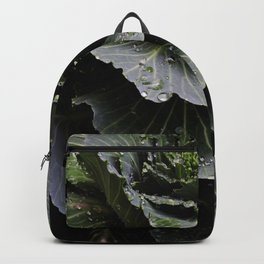 Earth and Water (1st in Cabbage Collection) Backpack