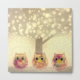 owl-222 Metal Print