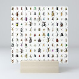 Beetlemania / Get your entomology on! Mini Art Print