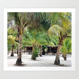 Bungalows on Palm Beach Art Print