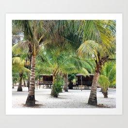Bungalows on Palm Beach Art Print