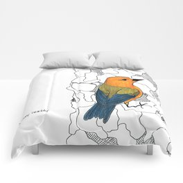 Prothonotary Warbler Comforters