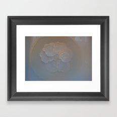 Shell Dish Framed Art Print
