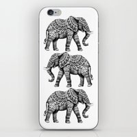 bioworkz iPhone & iPod Skins featuring Ornate Elephant 3.0 by BIOWORKZ