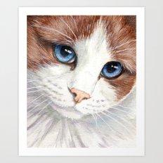 Blue-eyes cat 868 Art Print