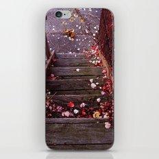 Autumn Stairs iPhone & iPod Skin
