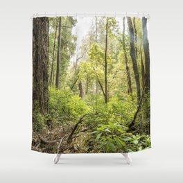 Schrader Old Growth Forest Shower Curtain