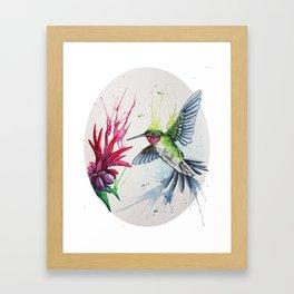 SPLASH Hummingbird Framed Art Print