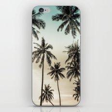Palm Trees iPhone & iPod Skin