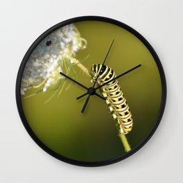 Catapillar on Queen Anns Lace - An Art Print Wall Clock