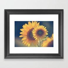 Sunflower 02 Framed Art Print