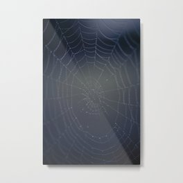Spider web Metal Print