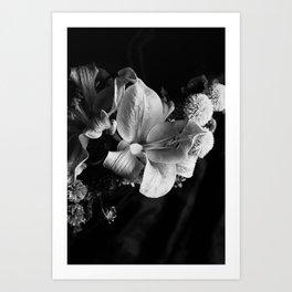 Wilt #2 Art Print