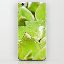 Jello iPhone Skin