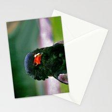 Bateleaur Eagle Stationery Cards