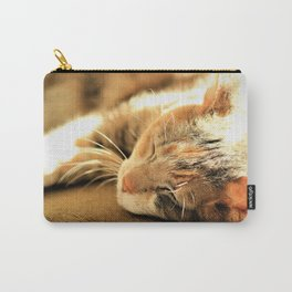 Sleepy Kitty Pretty Kitty by Reay of Light Carry-All Pouch