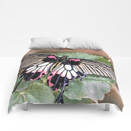 Majestic Tropical Butterfly Comforters