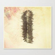 Static shock Canvas Print
