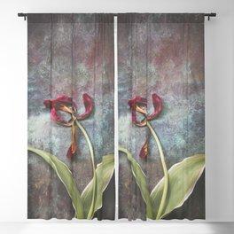 Faded Tulip Blackout Curtain