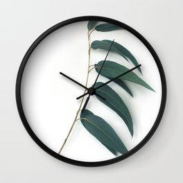 Eucalyptus /2/ Wall Clock