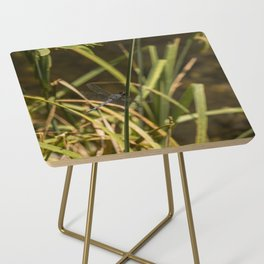 Dragonfly in the marsh Side Table