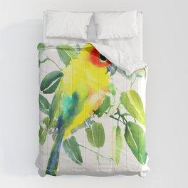 Sun Parakeet Comforters