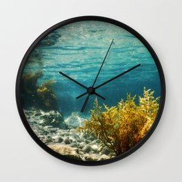 Forest of Seaweed, Seaweed Underwater, Seaweed Shallow Water near surface Wall Clock