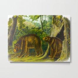 Cinnamon Bear Metal Print