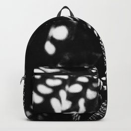 Accidental Photography Backpack