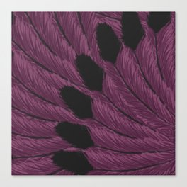 Watercolor Purple and Black Tipped Feathers Canvas Print