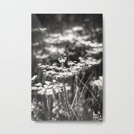 Ethereal II in Sepia Metal Print