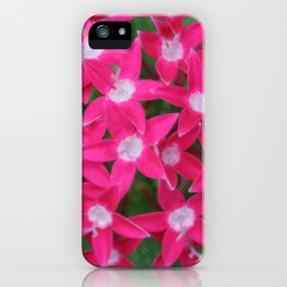 Pink Ixora iPhone Case