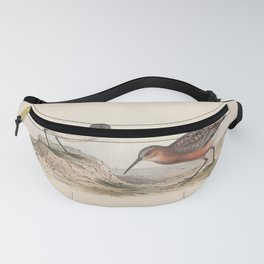 PIGMY CURLEW Fanny Pack