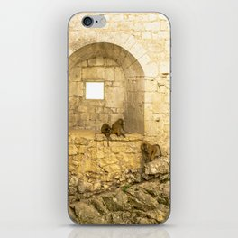 Planet of the Apes iPhone Skin