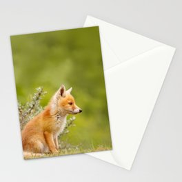 The Cute Fox Kit (Red Fox Cub) Stationery Cards