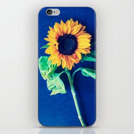 A decorative sunflower on the blue background iPhone Skin