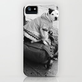 dog in a sweater iPhone Case