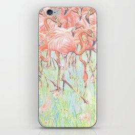 Flamingo Meadow iPhone Skin