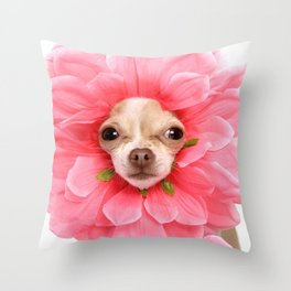 Chihuahua Flower Throw Pillow
