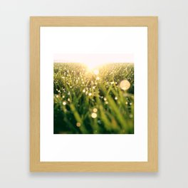 bokeh Framed Art Print