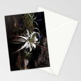Water Flower Stationery Cards