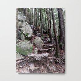 Step by step towards the top Metal Print