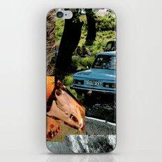 Col5 iPhone & iPod Skin