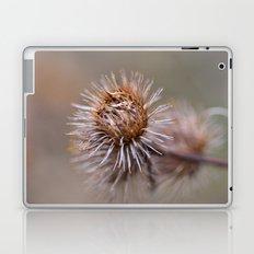 The Thorns Laptop & iPad Skin