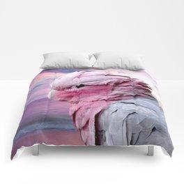 Galah Cockatoo Comforters