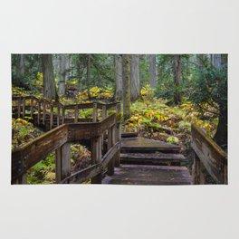Giant Cedars Boardwalk in Revelstoke British Columbia, Canada Rug