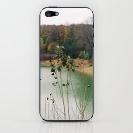 Autumn Glory iPhone Skin