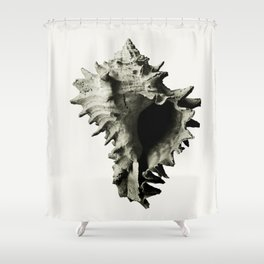 fossils nature Shower Curtain